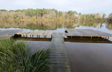Two new single swims on Lake Cadouzan for 2015